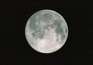 名月を撮ってくれろとなく子かな 一写