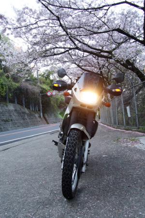 カワサキKLE400