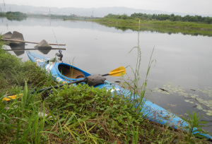 紀の川バス釣り