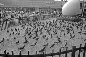 1980年大阪駅前