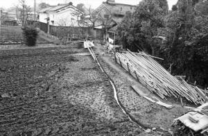 京都1973年