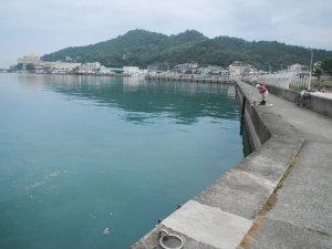 和歌浦湾であじ釣り