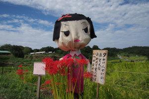 明日香村稲渕彼岸花祭り
