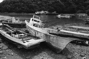 勝浦漁港にて