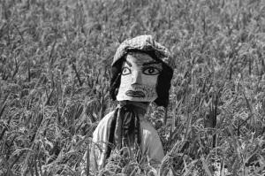 1975年8月太田川