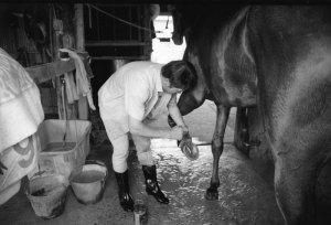 紀三井寺競馬場厩舎1978年