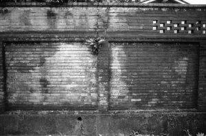 1976年3月街角