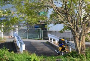 紀ノ川バス釣り