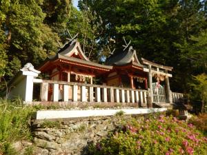 九度山町槙尾山明神社