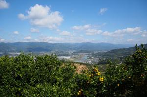 飯盛山桂谷桂