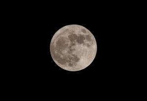 ハロウィーンと満月