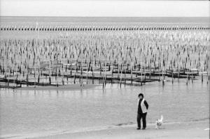 和歌山浜の宮海岸1980年